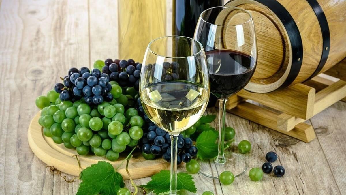 Rượu vang trắng Pháp - những điểm nhấn và ấn tượng khó phai