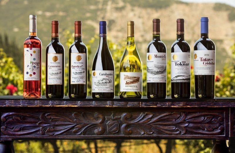 Nguyên nhân những chai rượu vang Chile thường có giá rẻ