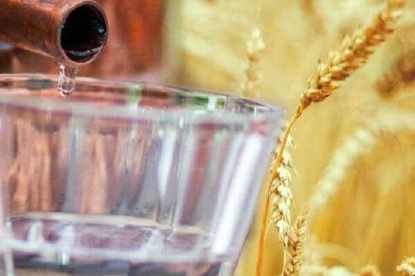 Quy trình sản xuất và những nguyên liệu tạo nên rượu vodka cá sấu