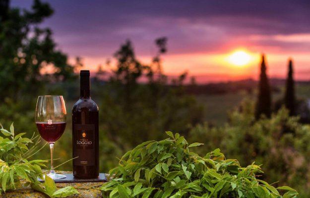 hương vị quyến rũ của rượu vang ý casarini