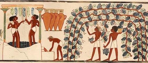 Nền văn minh Ai Cập cổ đại có rượu vang ra đời năm nào